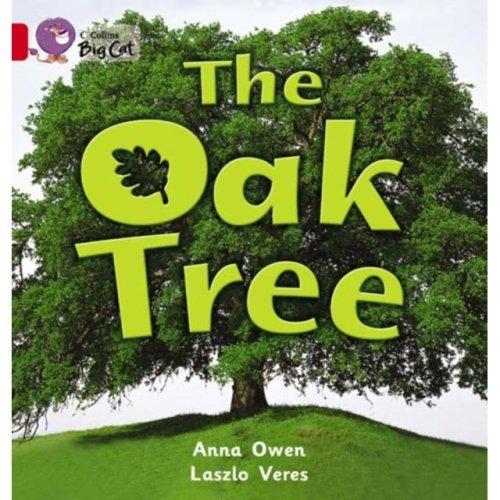 Collins Big Cat – The Oak Tree: Band 02B/Red B (Paperback)
