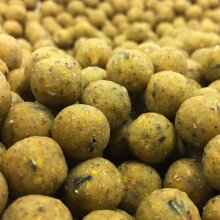 20 mm TIGERNUT FISHING BOILIES BAIT