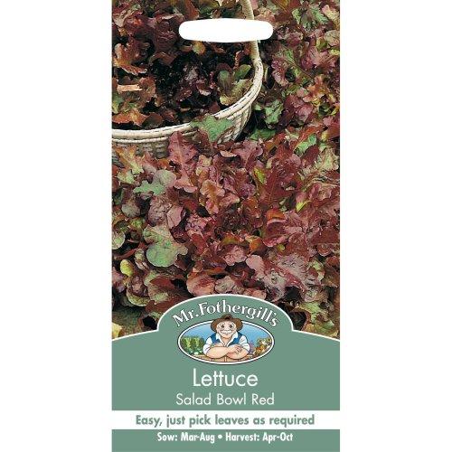 Mr Fothergills - Pictorial Packet - Vegetable - Lettuce Red Salad Bowl - 1250 Seeds