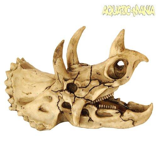 Repstyle Dinosaur Skull Reptile and Aquarium Ornament DRS078