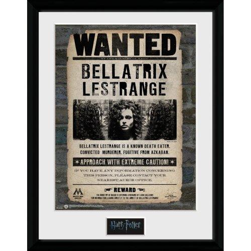 Harry Potter Bellatrix Collector Print