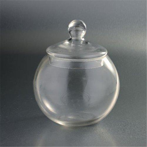 9.5 x 8 in. Glass Jar, Clear