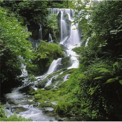 Crawfordsburn Country Park Co Down Ireland - Waterfall Poster Print by The Irish Image Collection, 15 x 15