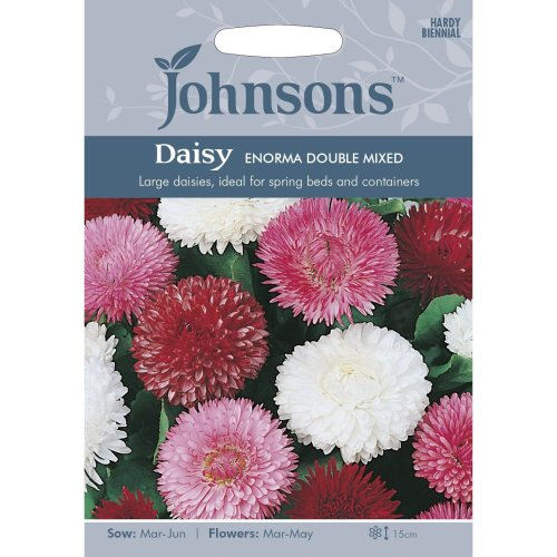 Johnsons Seeds - Pictorial Pack - Flower - Daisy Enorma Double Mixed - 250 Seeds