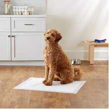 Pet Training Pads Leak Proof Quick-Dry For Large Puppies Dogs X-Large
