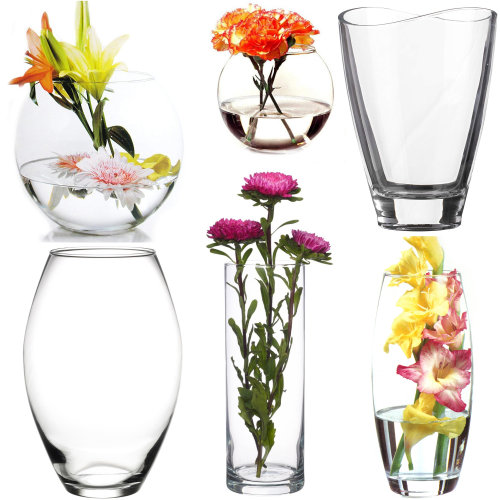 GEEZY Clear Glass Flower Vase - Different Designs Available