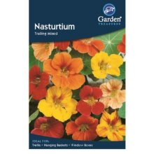 Nasturtium Trailing  Mixed Flower Seeds Garden Treasure 16 seeds