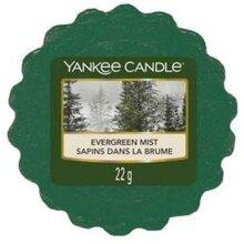 Yankee Candle Wax Melt Wax Tarts Evergreen Mist