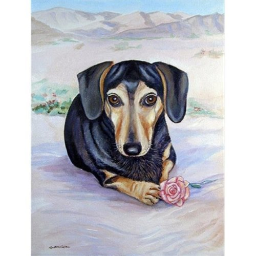 Black And Cream Dachshund Flag - Garden Size