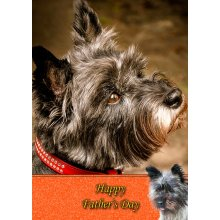 """Cairn Terrier Father's Day Greeting Card 8""""x5.5"""""""