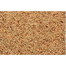 SkyGold Quality Budgie Cage & Aviary Seed Mix 20Kg