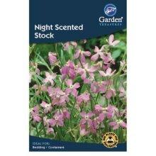 Night Scented Stock Flower Seeds Garden Treasure 250 Seeds