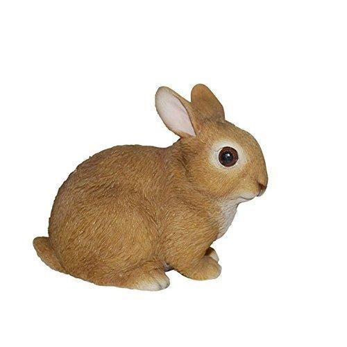 Vivid Arts Real Life Baby Rabbit
