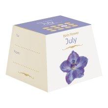 Gift Republic July Birth Flowers