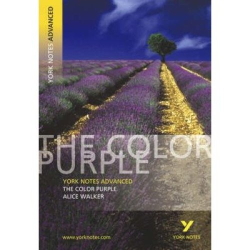 The Color Purple: York Notes Advanced