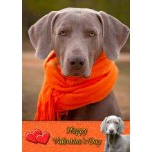 """Weimaraner Valentine's Day Greeting Card 8""""x5.5"""""""