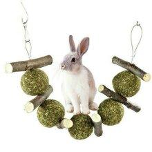 Pet Teeth Grinding Toys Tree Hanging Hamster Small Animal Rabbit Teething Cookie