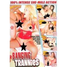 Banging Trannies