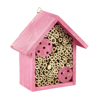 Pet Spider & Insect Supplies