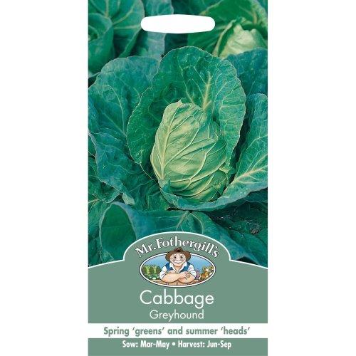 Mr Fothergills - Pictorial Packet - Vegetable - Cabbage Greyhound - 500 Seeds