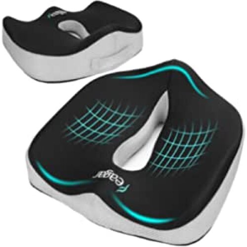 Feagar Seat Cushion for Back Pain Relief