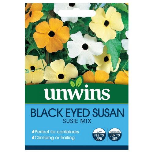 Unwins Grow Your Own Black Eyed Susan Susie Mix Climbing Flower Seeds