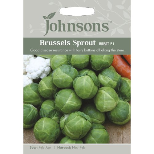 Johnsons Seeds - Pictorial Pack - Vegetable - Brussels Sprout Brest F1 - 40 Seeds