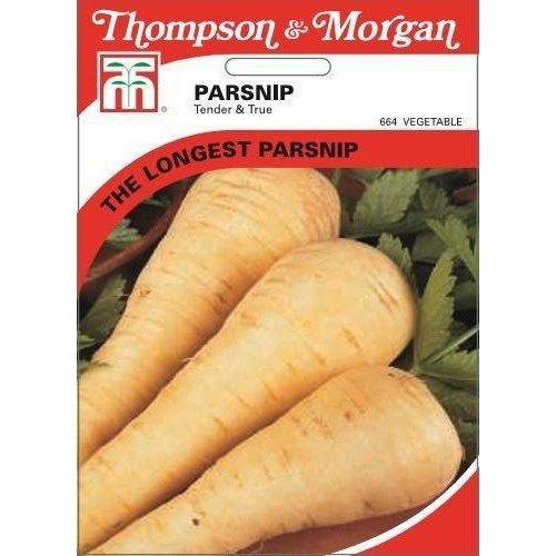 Thompson & Morgan - Vegetables - Parsnip Tender & True - 550 Seed
