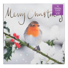 WHSmith Robins Christmas Cards With 2 Designs Pack Of 12