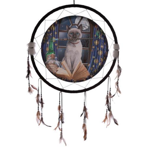 Decorative Lisa Parker Hocus Pocus 60cm Dreamcatcher