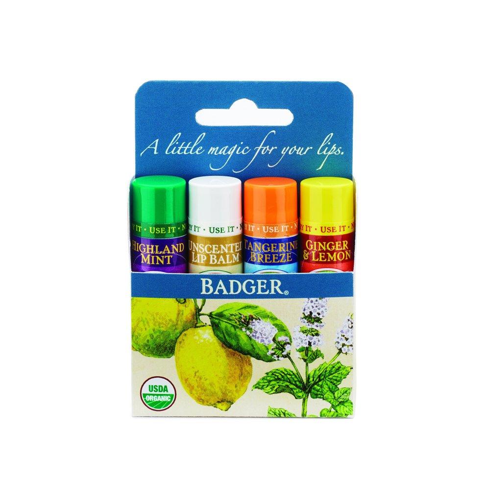 Buy Badger Organic Classic Lip Balm Variety Pack 4 Pack