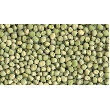 1KG DRIED MARROWFAT PEAS - MAKES MUSHY PEAS - SIMPLY BOIL & SIMMER