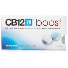 CB12 Boost Strong Mint Gum