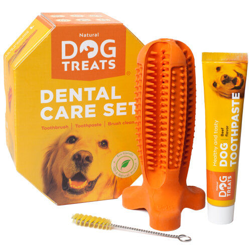 Natural Dog Treats Toothbrush Stick, Dog Chew Toy and Toothpaste Beef Flavour Dental Cleaning Set