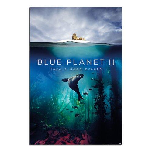BBC Blue Planet 2 Take A Deep Breath Poster