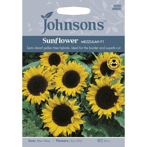 Johnsons Seeds - Pictorial Pack - Flower - Sunflower Mezzulah F1 - 20 Seeds