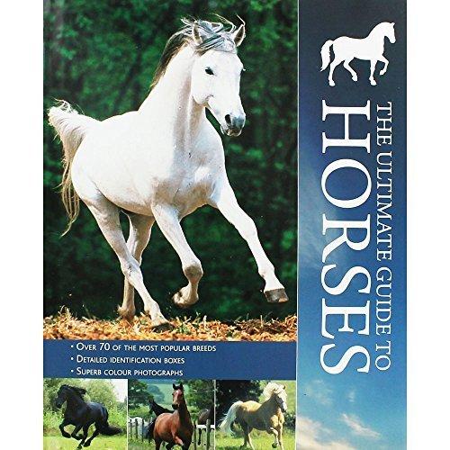 Encyclopedia - Horses