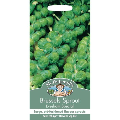 Mr Fothergills - Pictorial Packet - Vegetable - Brussels Sprout Evesham Special - 500 Seeds
