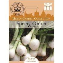 Thompson & Morgan - Kew Urban Vegetables - Spring Onion Pompeii - 300 Seed