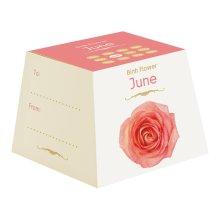 Gift Republic June Birth Flowers