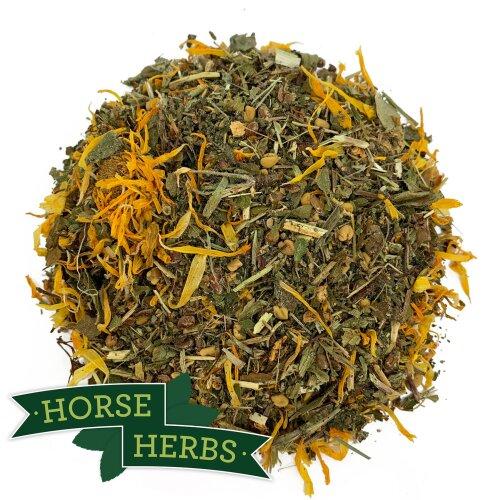 Horse Herbs Healthy Veteran 1kg - Older Horse Care, Burdock, Supplement, Equine
