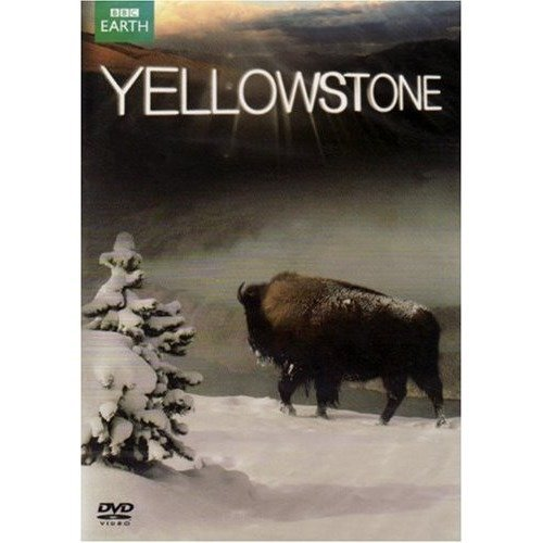 Yellowstone DVD [2009]