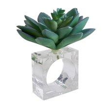Saro Lifestyle NR725.A Succulent Design Napkin Ring Holders - Set of 4