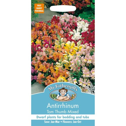 Mr Fothergills - Pictorial Packet - Flower - Antirrhinum Tom Thumb Mixed - 1500 Seeds