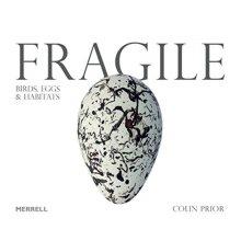 Fragile Birds Eggs & Habitats by Prior & Colin