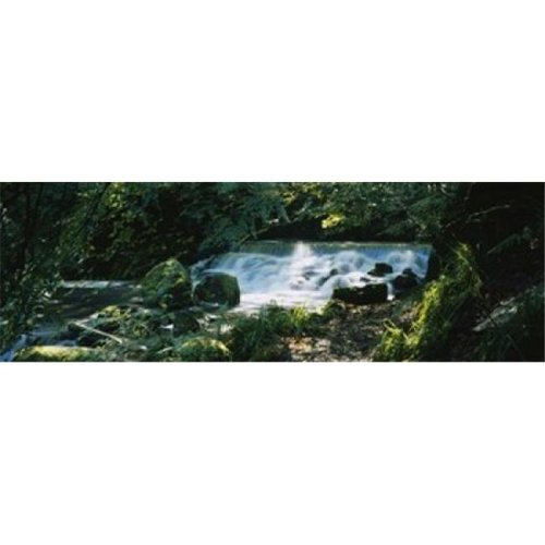 Waterfall in the forest  Birks O Aberfeldy  Perthshire  Scotland Poster Print by  - 36 x 12