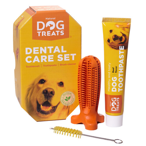 (Set for Small Sized Dog Breeds) Natural Dog Treats Toothbrush Stick, Dog Chew Toy and Toothpaste Beef Flavour Dental Cleaning Set