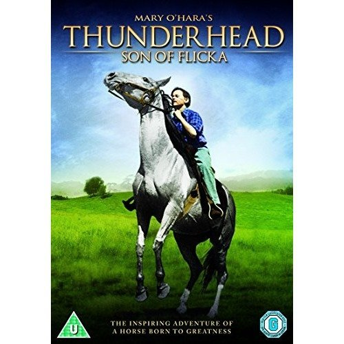 Thunderhead - Son Of Flicka DVD [2012]