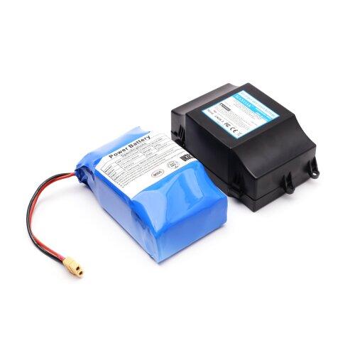 Hoverboard Battery, Smart Balance™ Premium Brand, 4Ah, Samsung Cells