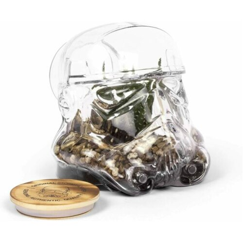 Shepperton Original Stormtrooper Terrarium | Sealed Glass Terrarium For Houseplants